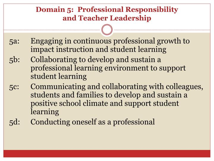 Domain 5:  Professional Responsibility