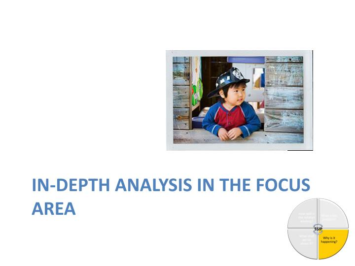 in-depth analysis in the focus area