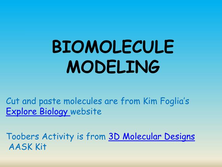 experiment one biology model answers essay