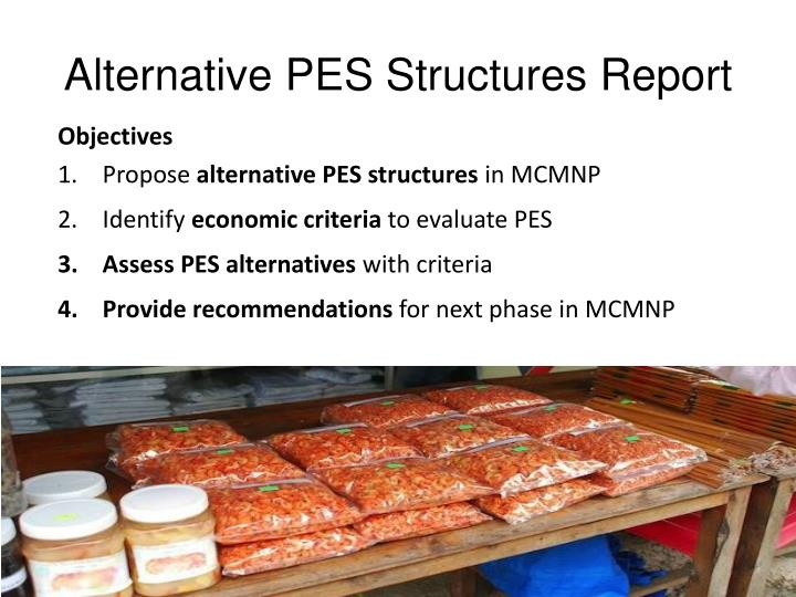 Alternative PES Structures Report