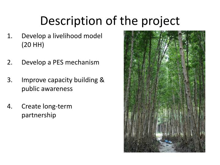 Description of the project