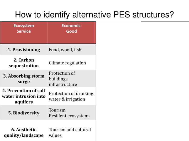 How to identify alternative PES structures?