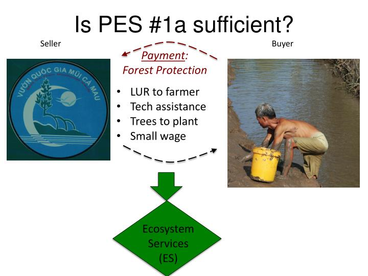 Is PES #1a sufficient?