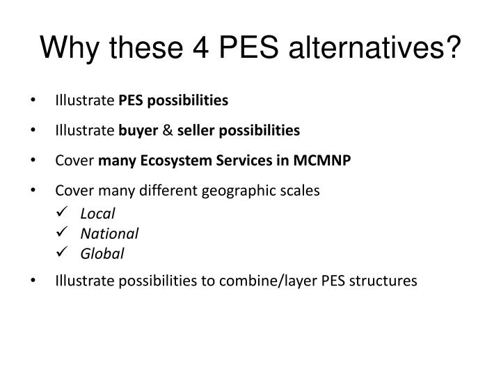 Why these 4 PES alternatives?