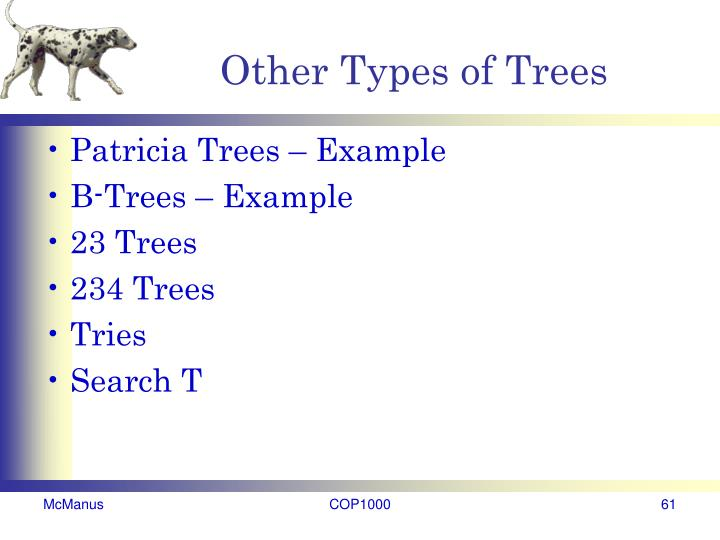 Other Types of Trees