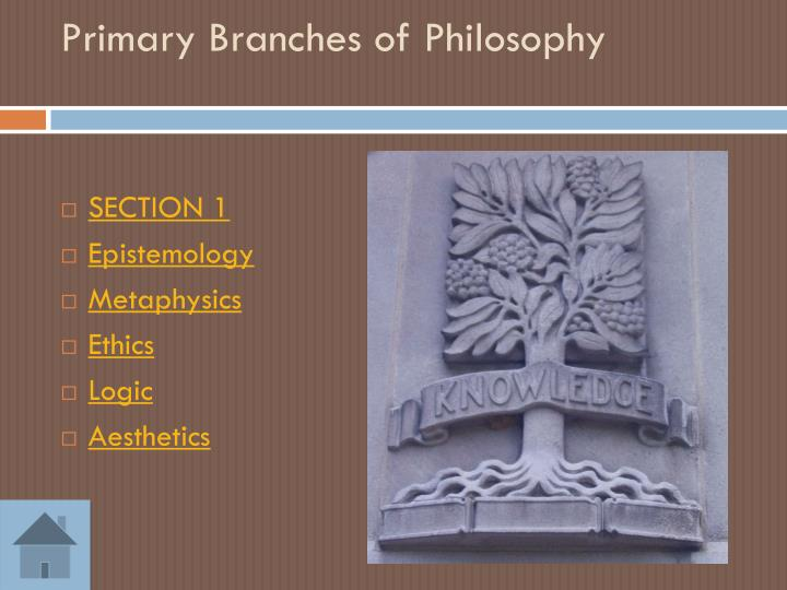 Primary Branches of Philosophy