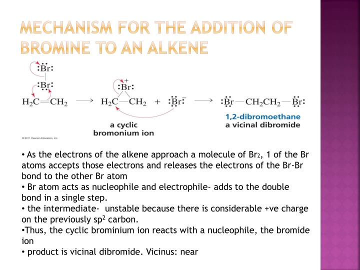 Mechanism for the addition of bromine to an