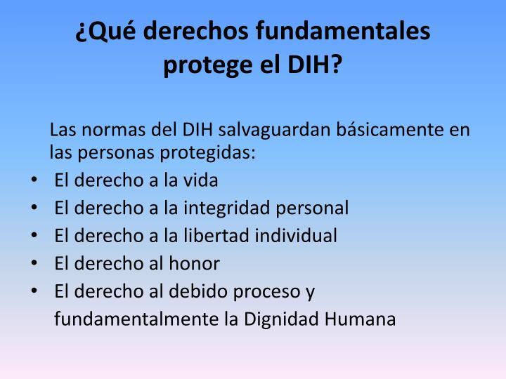 ¿Qué derechos fundamentales protege el