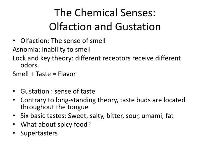 The Chemical Senses: