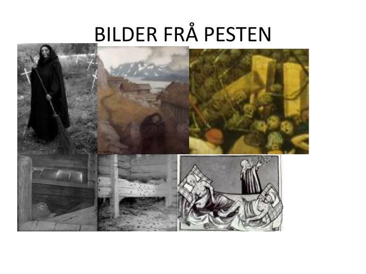 BILDER FRÅ PESTEN