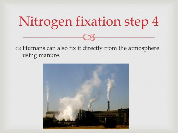Nitrogen fixation step 4