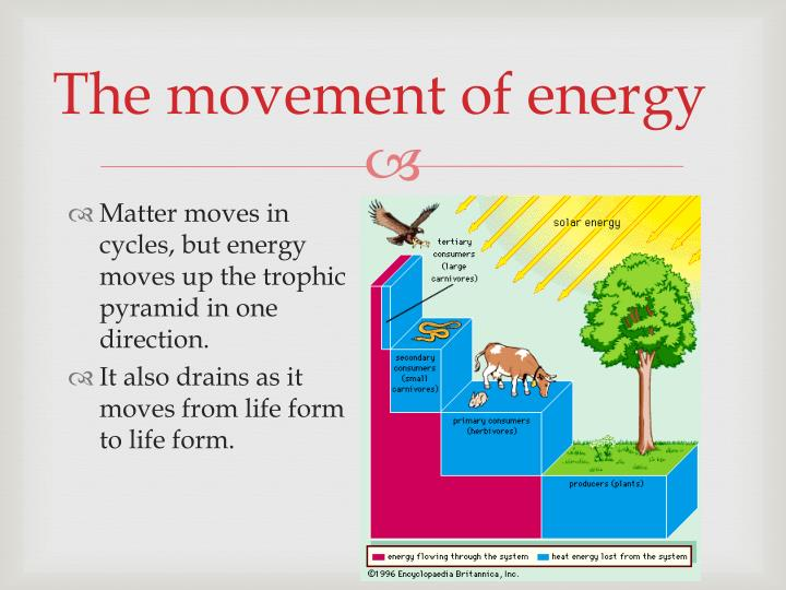 The movement of energy
