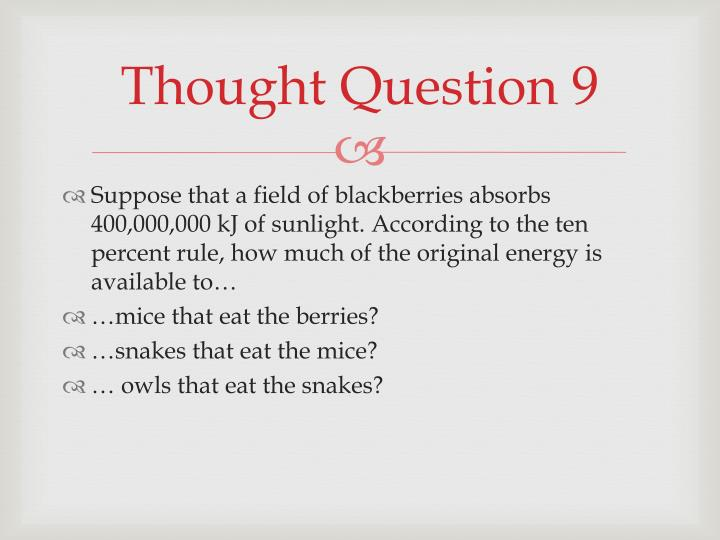 Thought Question 9