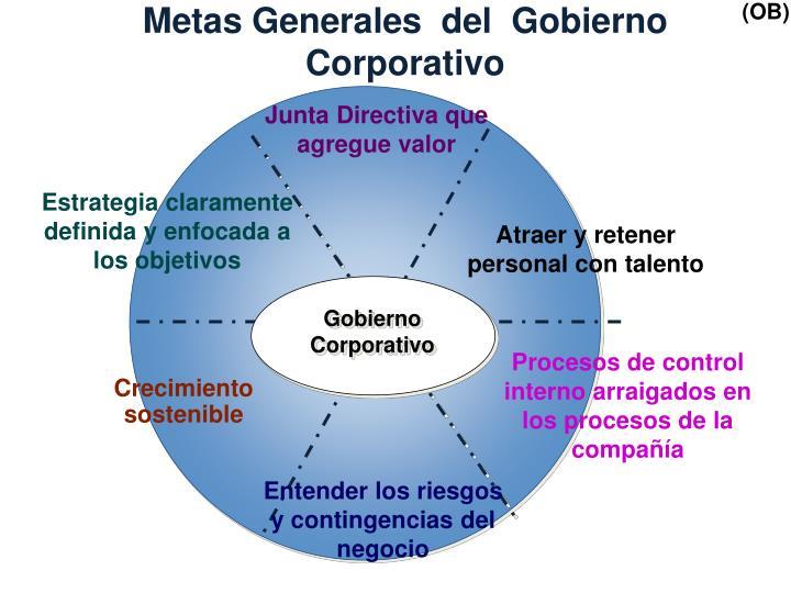 Metas Generales  del  Gobierno Corporativo