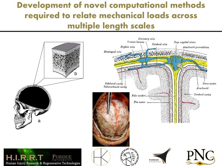 Development of novel computational methods required to relate mechanical loads across multiple length scales