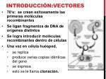 introducci n vectores