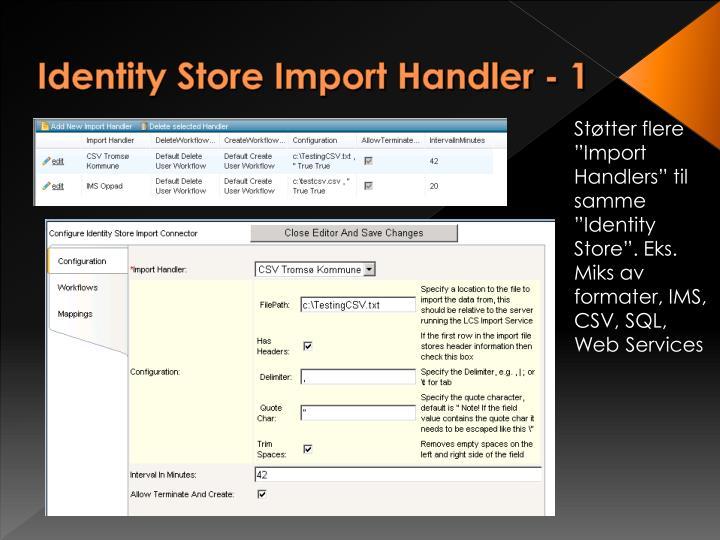 Identity Store Import Handler - 1