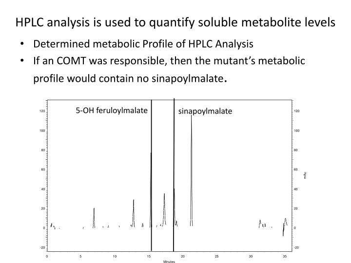 HPLC analysis is used to quantify soluble metabolite levels