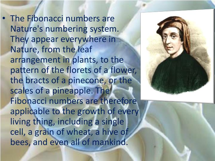 The Fibonacci numbers are Nature's numbering system. They appear everywhere in Nature, from the leaf arrangement in plants, to the pattern of the florets of a flower, the bracts of a pinecone, or the scales of a