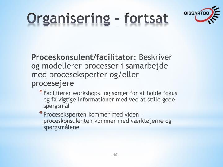Organisering - fortsat