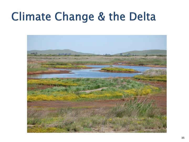 Climate Change & the Delta
