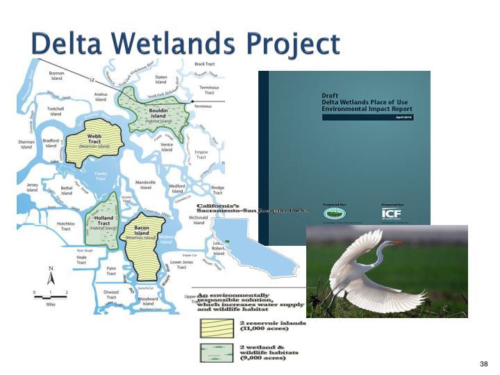 Delta Wetlands Project
