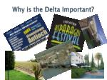 why is the delta important