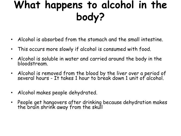 What happens to alcohol in the body?