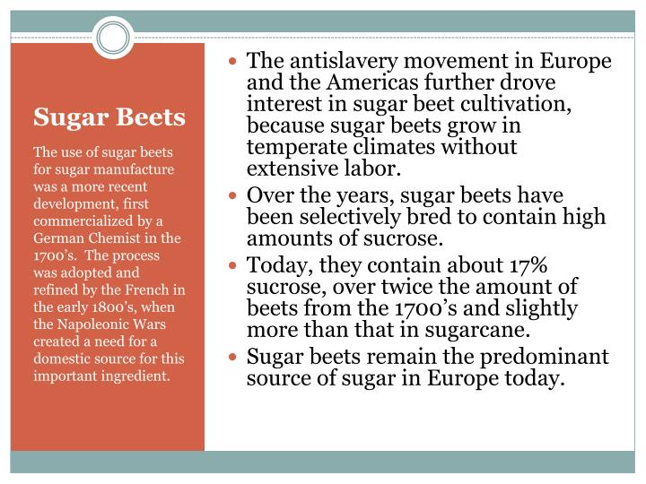 The antislavery movement in Europe and the Americas further drove interest in sugar beet cultivation, because sugar beets grow in temperate climates without extensive labor.