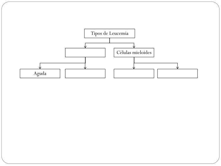 Tipos de Leucemia