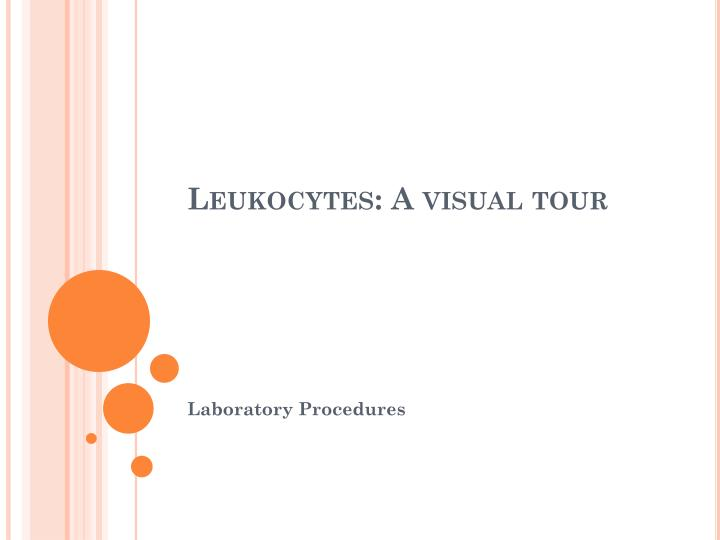 Leukocytes a visual tour