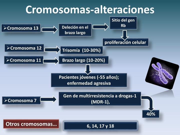 Cromosomas-alteraciones