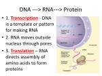 dna rna protein