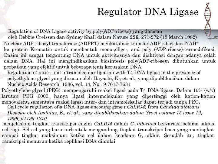 Regulator DNA