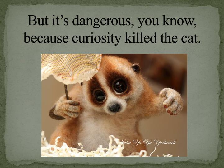 But it's dangerous, you know,
