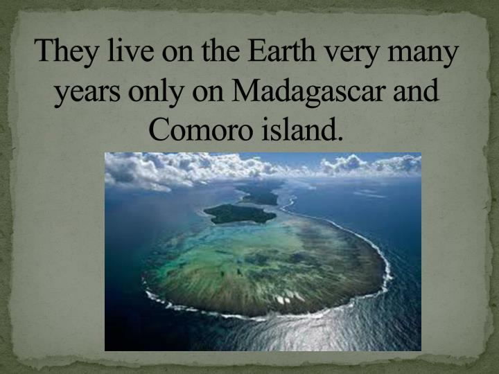 They live on the Earth very many years