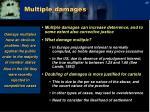 multiple damages