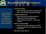 why private damages actions