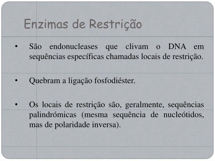 Enzimas de Restrição