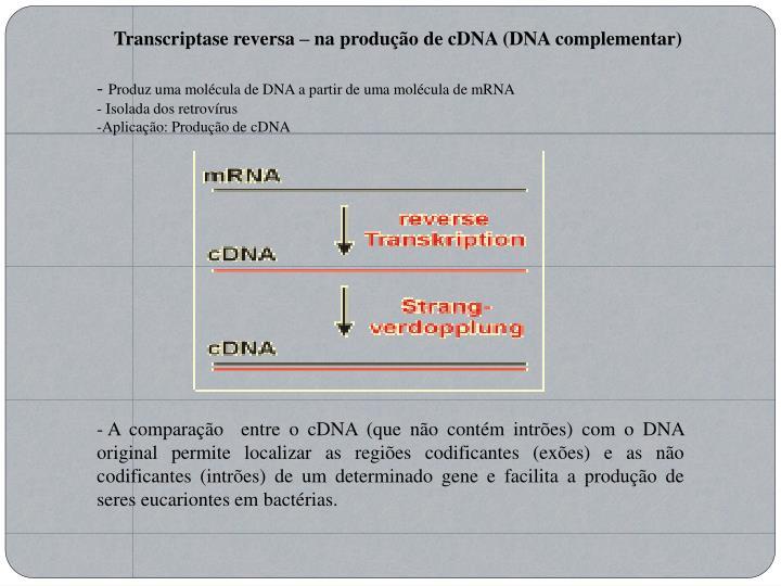 Transcriptase