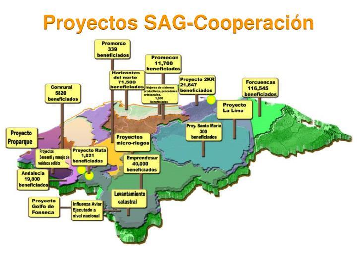 Proyectos SAG-Cooperación