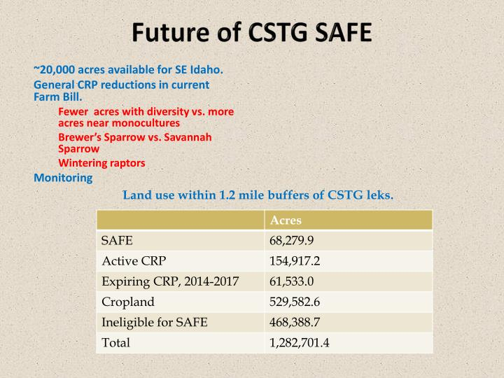 Future of CSTG SAFE