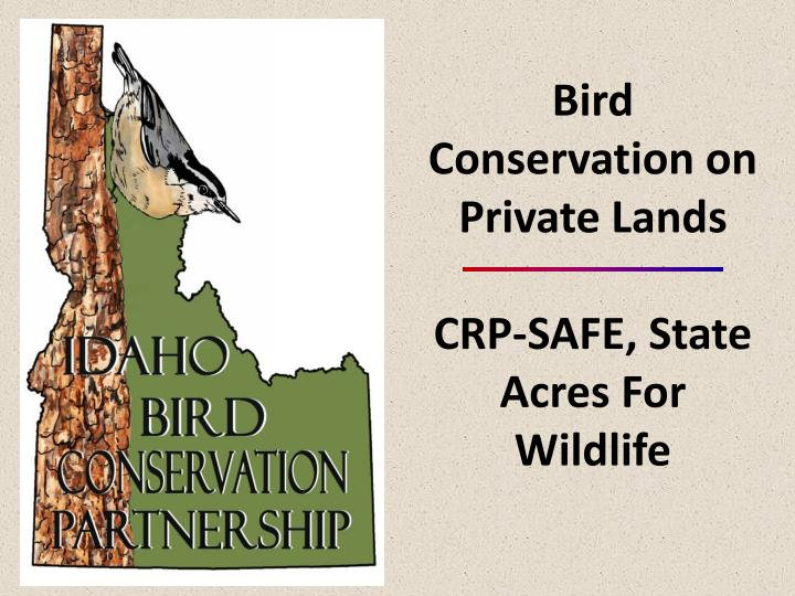 Bird Conservation on Private Lands