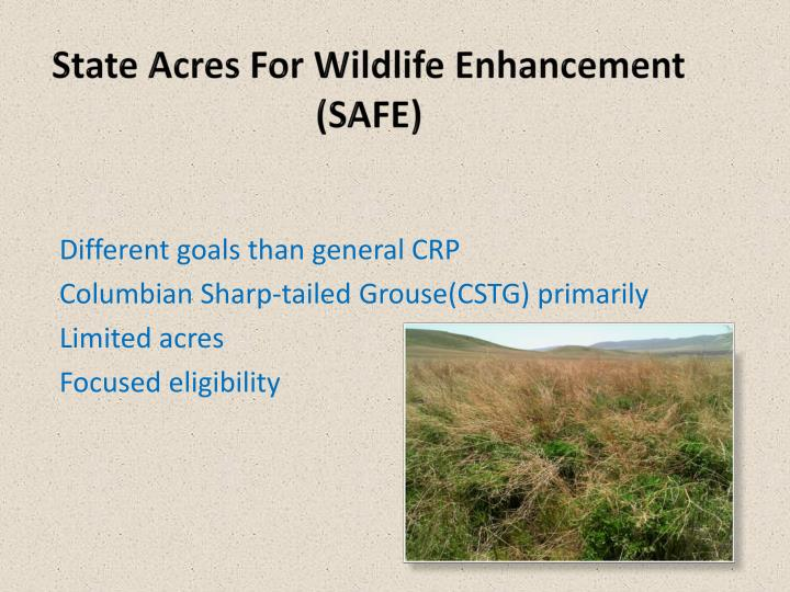 State Acres For Wildlife Enhancement