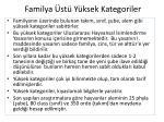 familya st y ksek kategoriler
