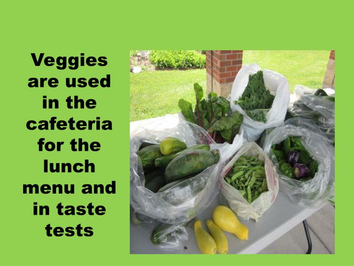 Veggies are used in the cafeteria for the lunch menu and in taste tests