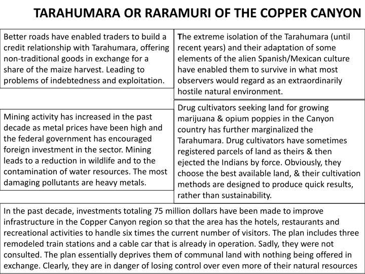 TARAHUMARA OR RARAMURI OF THE COPPER CANYON
