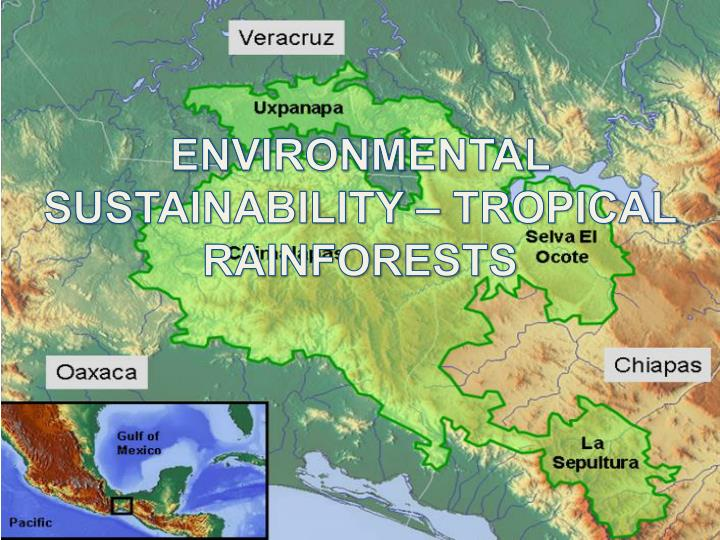 ENVIRONMENTAL SUSTAINABILITY – TROPICAL RAINFORESTS