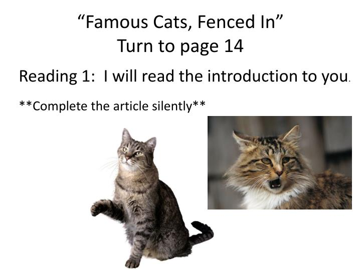 """""""Famous Cats, Fenced In"""