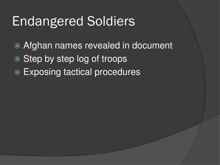 Endangered Soldiers